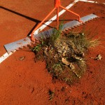 Frühjahrsüberholung Tennisplatz - starker Grünbewuchs Ziegelmehlschicht
