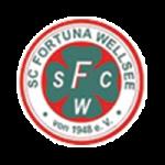 Fortuna Wellsee - logo